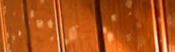 Eliminar la floridura de la fusta